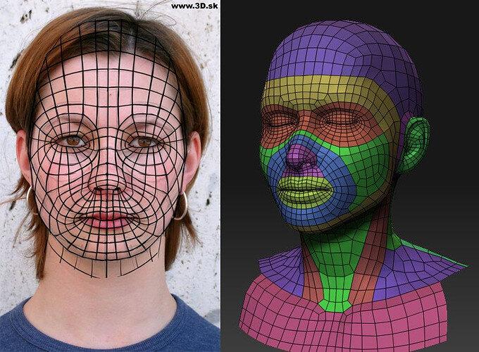 facial loops 2